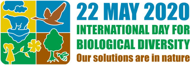 International Day for Biological Diversity: 22 May